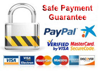 Garantia de pago seguro